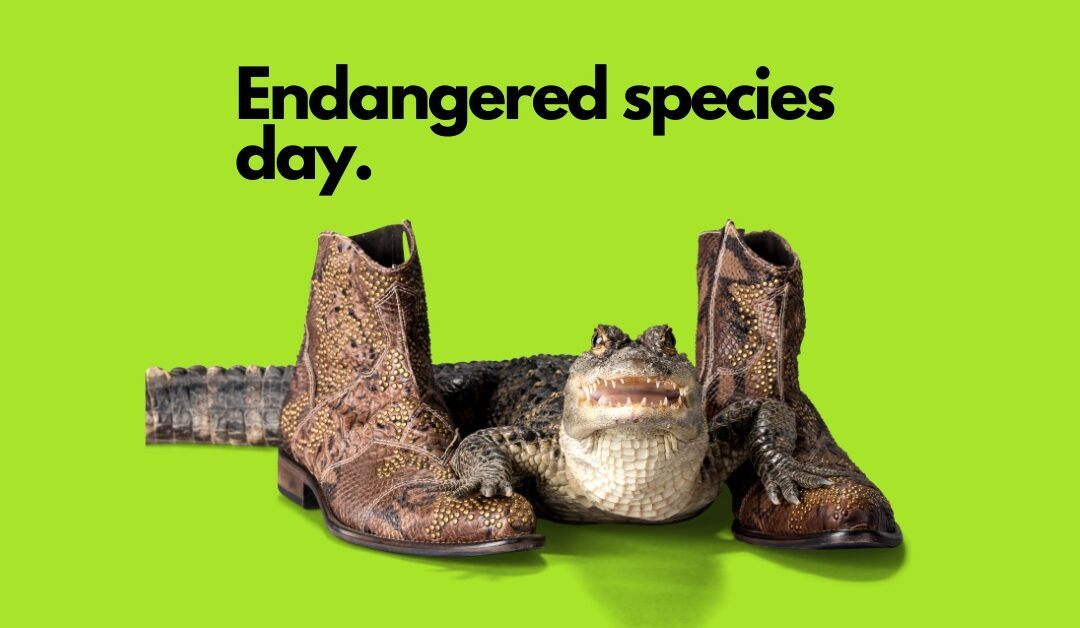 Why do we need an Endangered Species Day ?